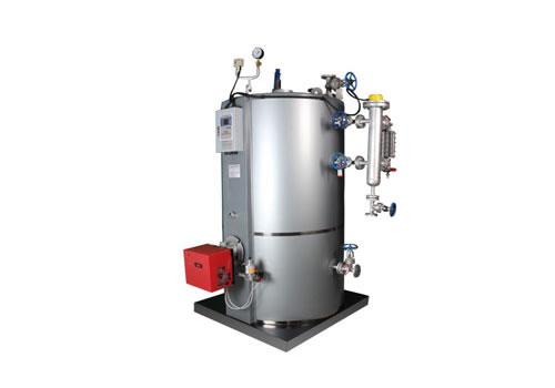 立式甲醇蒸汽锅炉