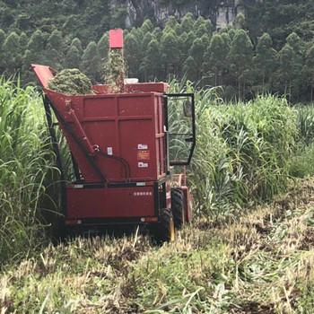 山东自走式青储玉米收割机厂家 带料仓的青储玉米收割机