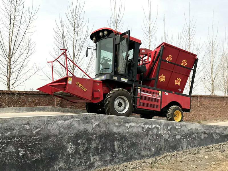 前置割台牛羊青储饲料收割机,自走轮式大型青储机生产厂家