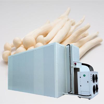 白玉菇烘干机空气能烘干设备