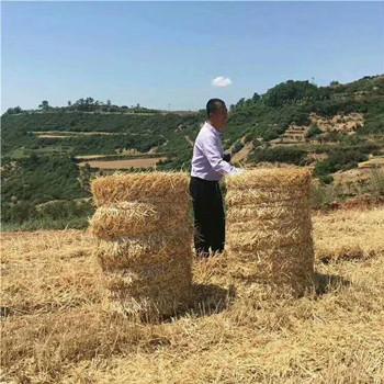 稻草捆草机 捆扎机 捆草机