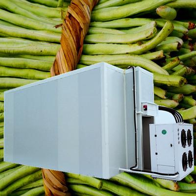 豇豆烘干机空气能烘干设备