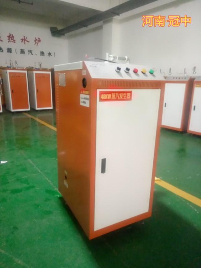 电加热小型锅炉电蒸汽发生器