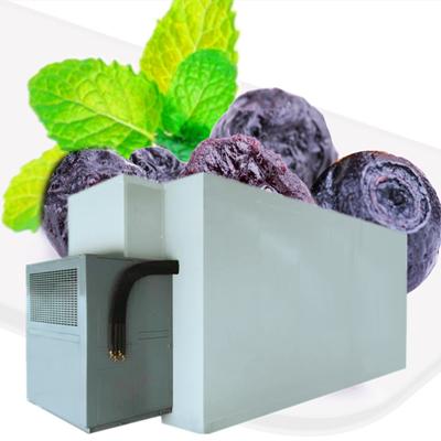 蓝莓大型烘干机空气能烘干设备