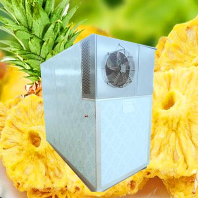 菠萝家用烘干机空气能烘干设备