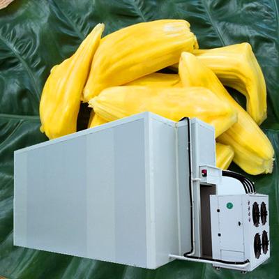 菠萝蜜大型烘干机空气能烘干设备
