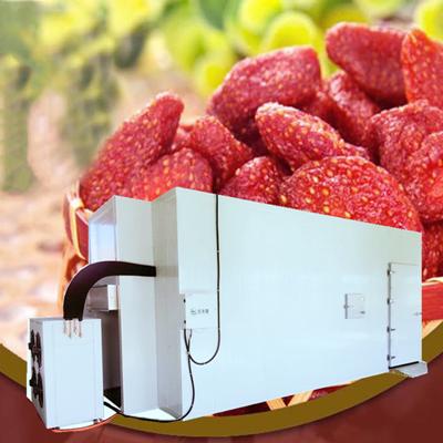 草莓大型烘干机空气能烘干设备