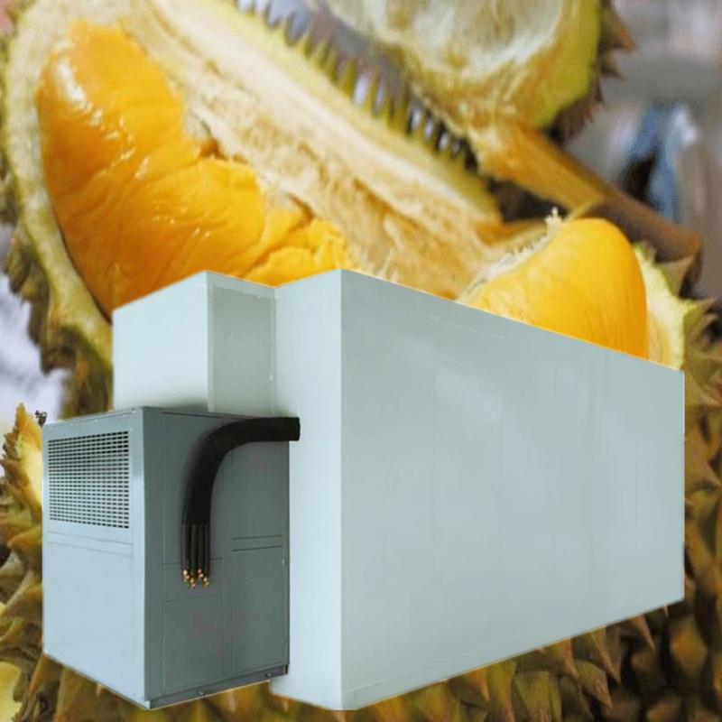 榴莲烘干机空气能烘干设备