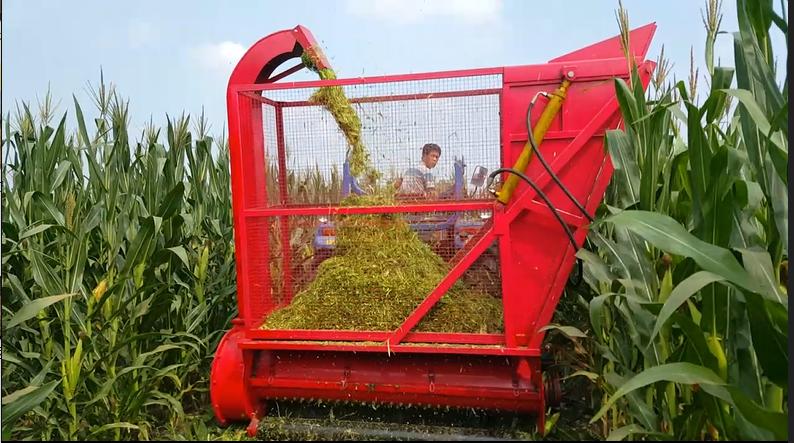(青)黄储饲料收获机 秸秆回收机价格
