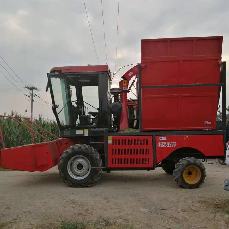 玉米青储机 青储玉米收割机
