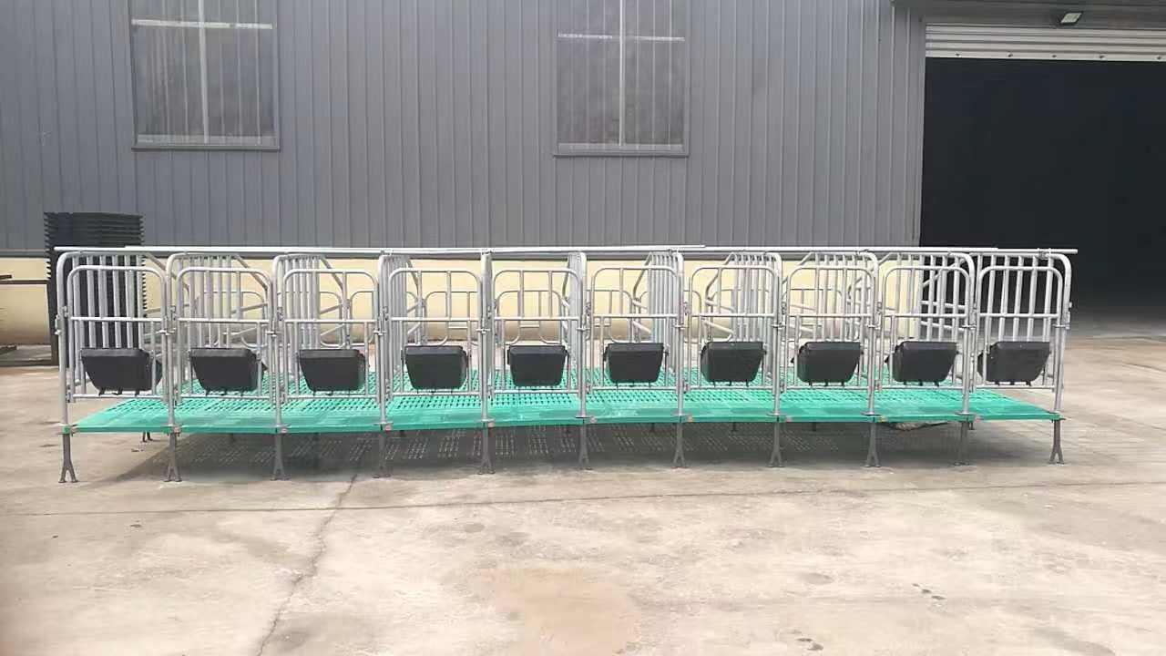 养殖设备,母猪定位栏 限位栏使用好处