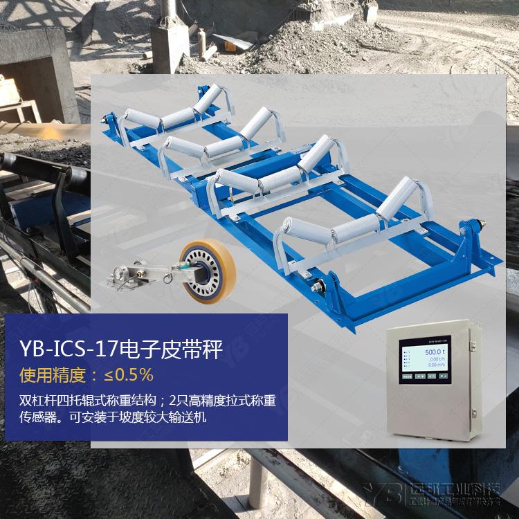 YB-ICS皮带秤