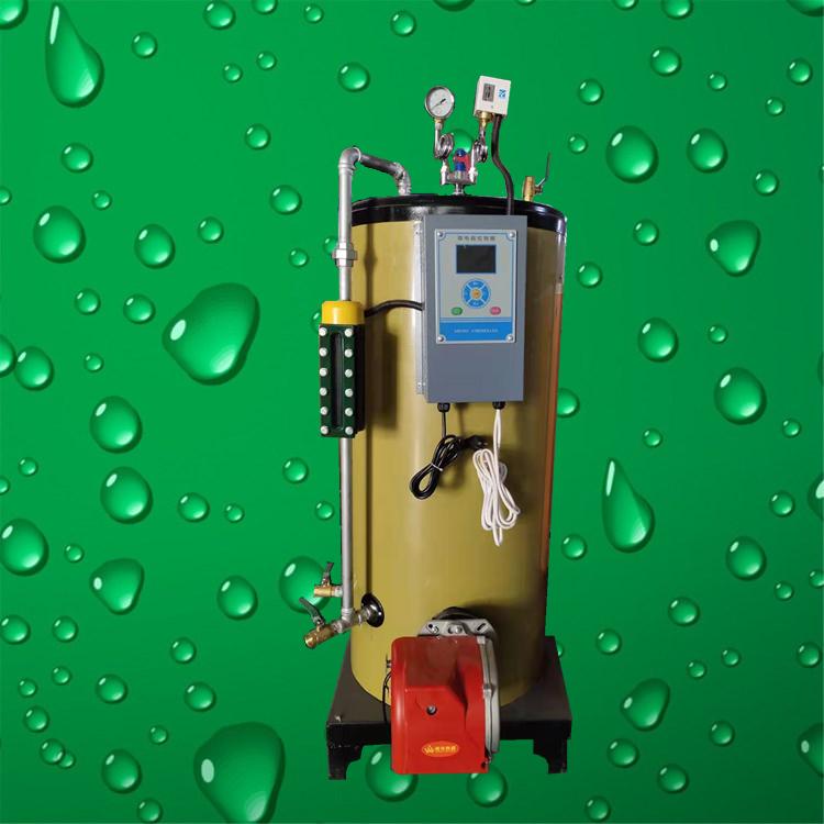 0.1吨燃气蒸汽发生器