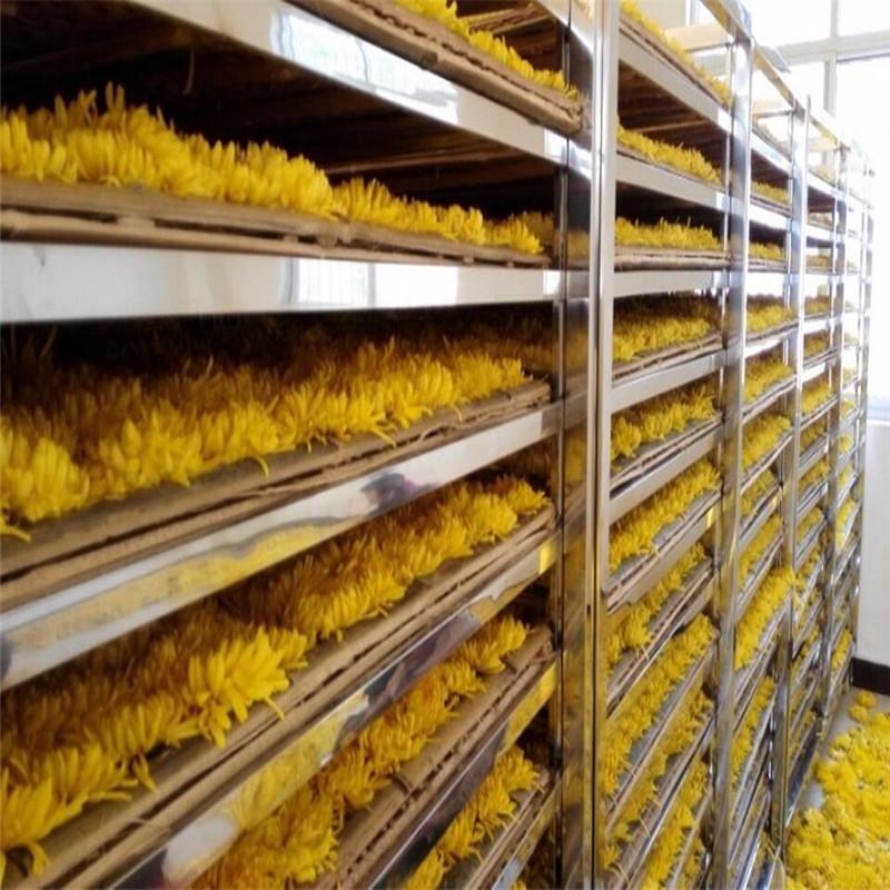 蓝天机械金丝皇菊的烘干房  金丝皇菊的烘干机 金丝皇菊的烘干机定制 金丝皇菊的烘干机厂家