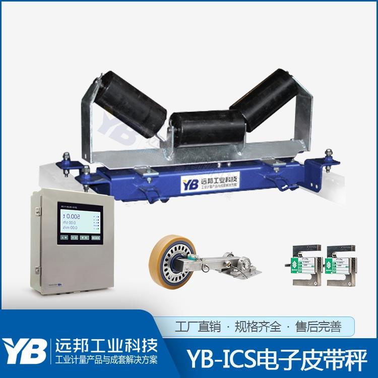 YB-ICS-30系列电子皮带秤