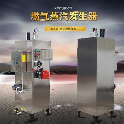 热水锅炉50KG全自动生物质蒸汽发生器