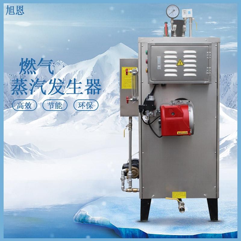 旭恩立式燃气蒸汽发生器小型全自动燃气蒸汽锅炉免报检